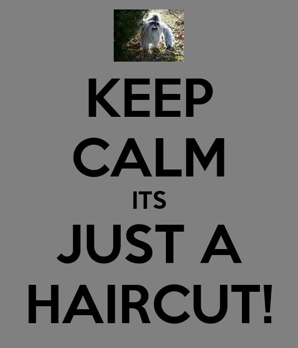 KEEP CALM ITS JUST A HAIRCUT!