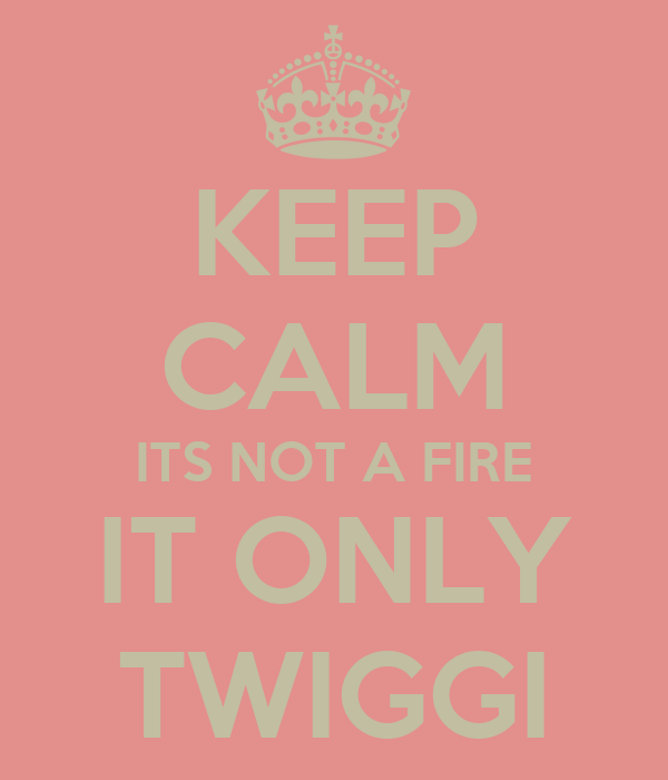 KEEP CALM ITS NOT A FIRE IT ONLY TWIGGI