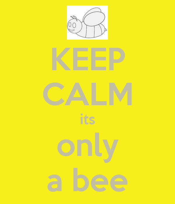 KEEP CALM its only a bee