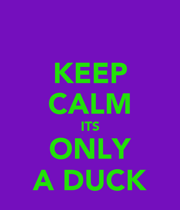 KEEP CALM ITS ONLY A DUCK