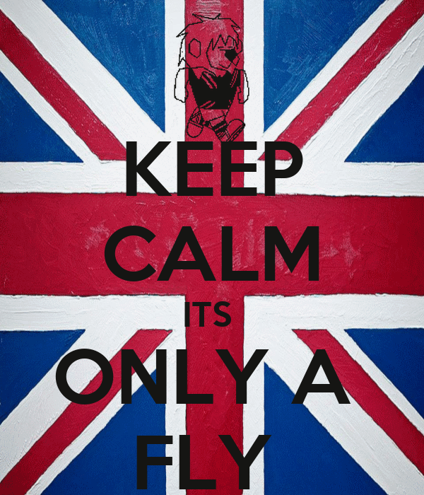 KEEP CALM ITS  ONLY A  FLY