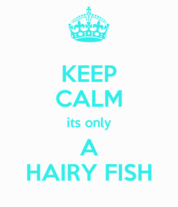 KEEP CALM its only A HAIRY FISH