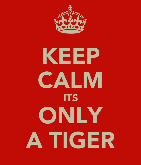 KEEP CALM ITS ONLY A TIGER
