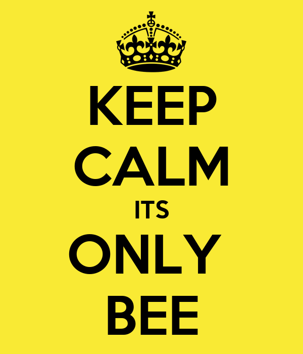 KEEP CALM ITS ONLY  BEE