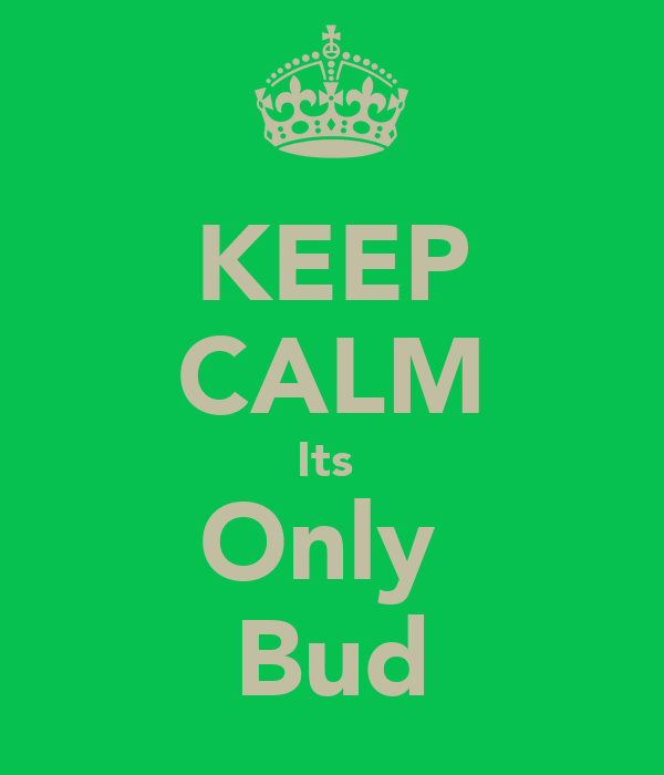 KEEP CALM Its  Only  Bud
