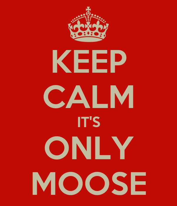 KEEP CALM IT'S ONLY MOOSE