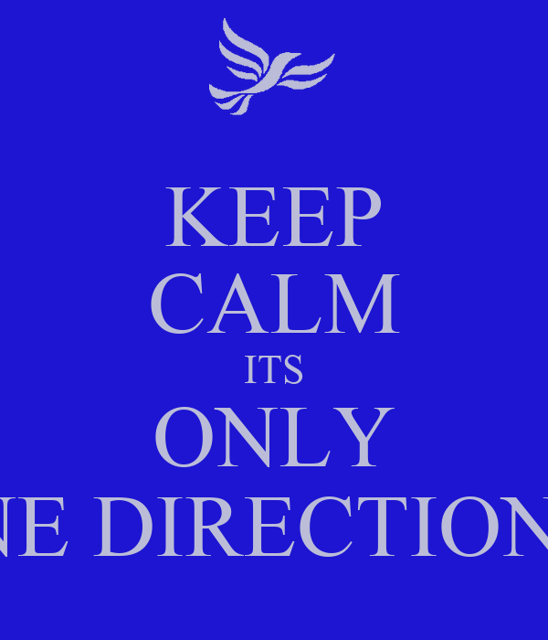 KEEP CALM ITS ONLY ONE DIRECTION<3