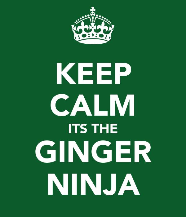 KEEP CALM ITS THE GINGER NINJA
