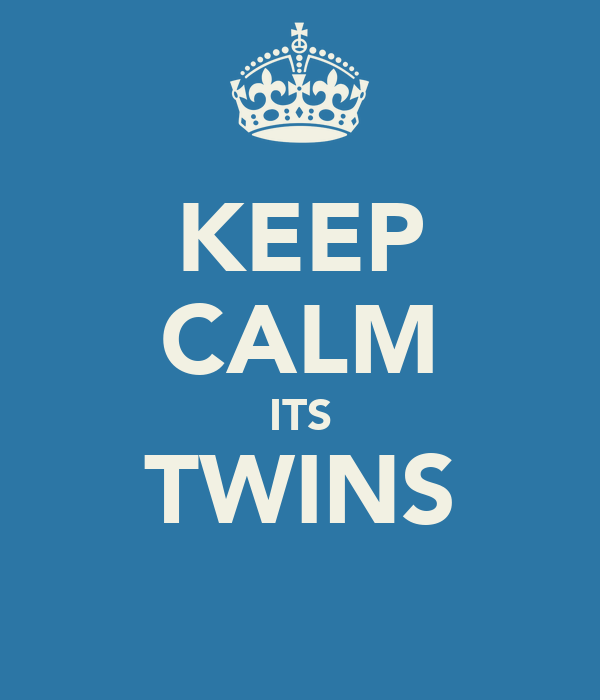 KEEP CALM ITS TWINS