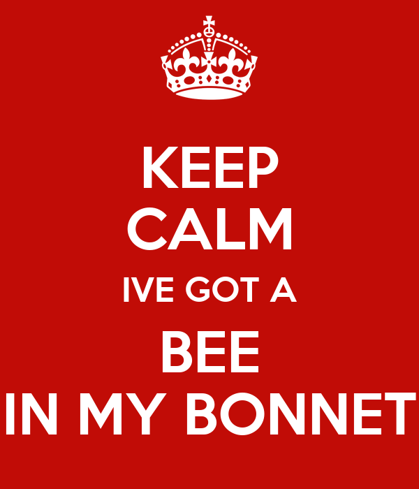 KEEP CALM IVE GOT A BEE IN MY BONNET