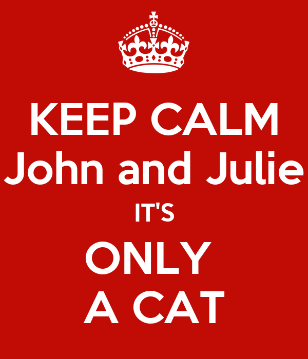 KEEP CALM John and Julie IT'S ONLY  A CAT