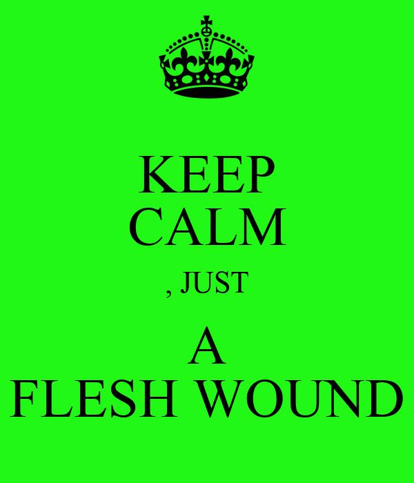 KEEP CALM , JUST A FLESH WOUND