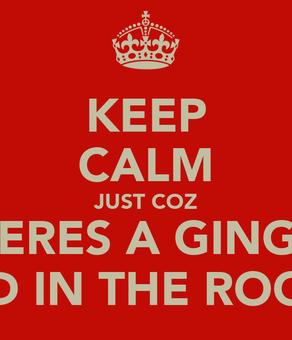 KEEP CALM JUST COZ THERES A GINGER KID IN THE ROOM