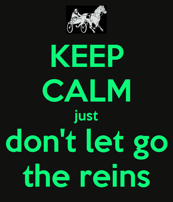 KEEP CALM just don't let go the reins