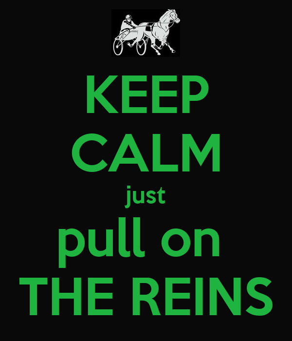 KEEP CALM just pull on  THE REINS