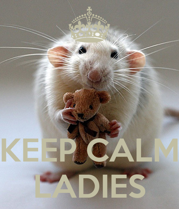 KEEP CALM LADIES