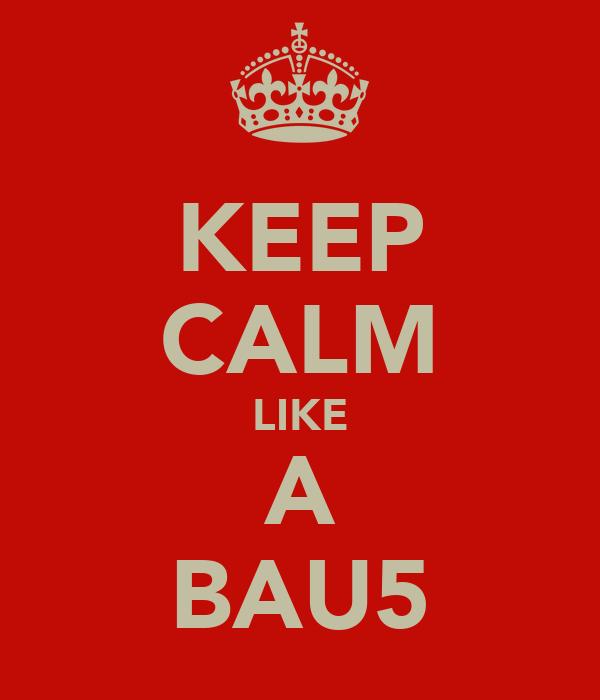 KEEP CALM LIKE A BAU5