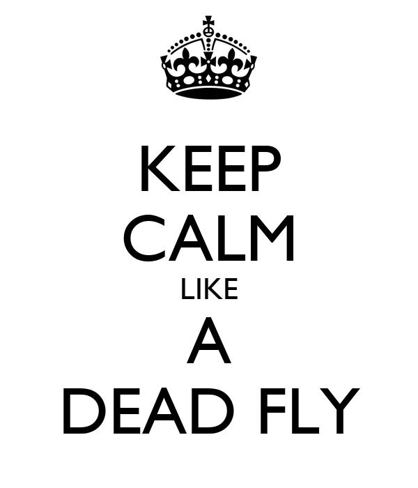 KEEP CALM LIKE A DEAD FLY