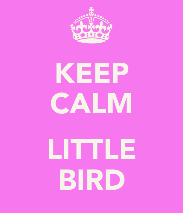 KEEP CALM  LITTLE BIRD