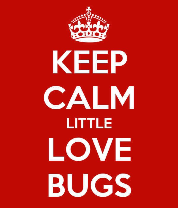 KEEP CALM LITTLE LOVE BUGS