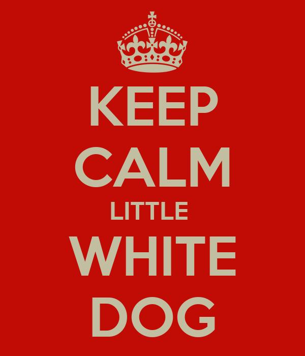 KEEP CALM LITTLE  WHITE DOG