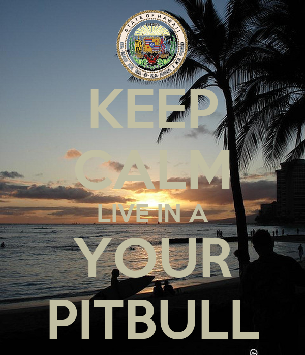 KEEP CALM LIVE IN A YOUR PITBULL
