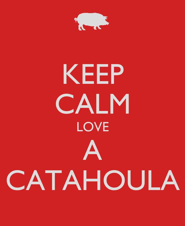 KEEP CALM LOVE A CATAHOULA