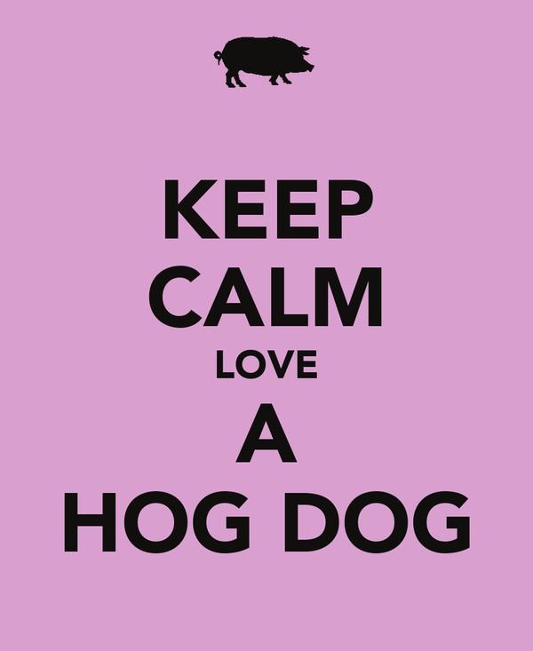 KEEP CALM LOVE A HOG DOG