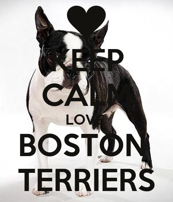 KEEP CALM LOVE  BOSTON  TERRIERS