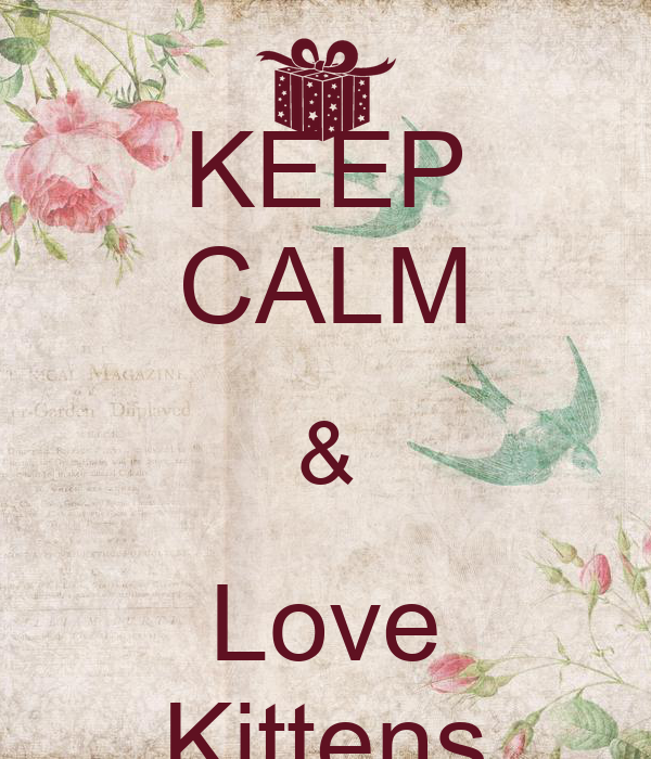 KEEP CALM & Love Kittens