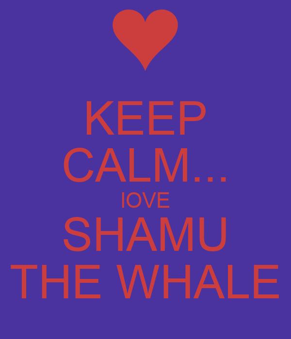 KEEP CALM... lOVE SHAMU THE WHALE