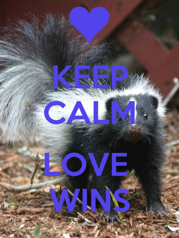 KEEP CALM  LOVE  WINS