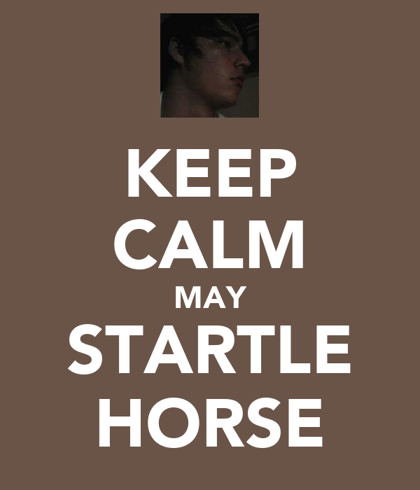 KEEP CALM MAY STARTLE HORSE