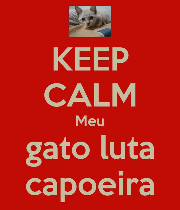 KEEP CALM Meu gato luta capoeira