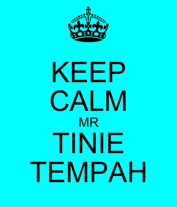 KEEP CALM MR TINIE TEMPAH