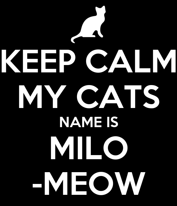 KEEP CALM MY CATS NAME IS MILO -MEOW