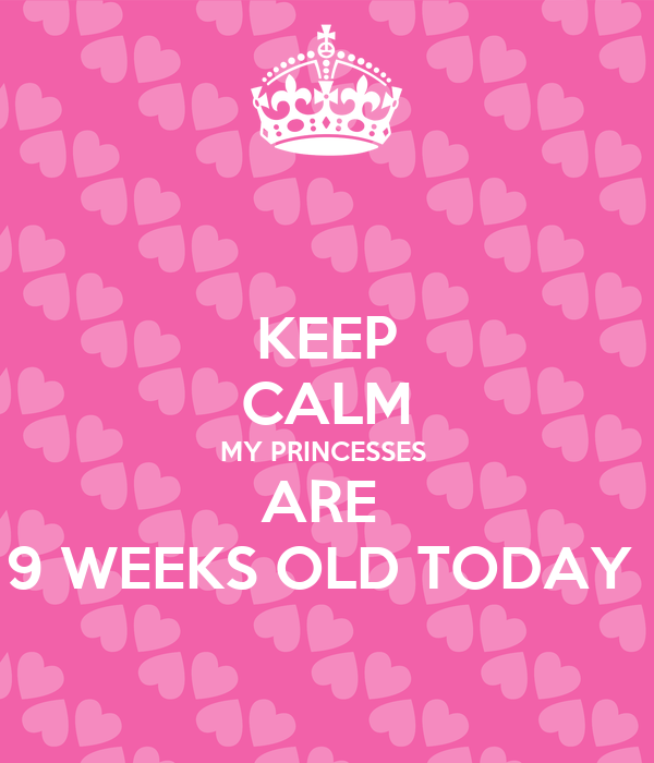 KEEP CALM MY PRINCESSES  ARE  9 WEEKS OLD TODAY