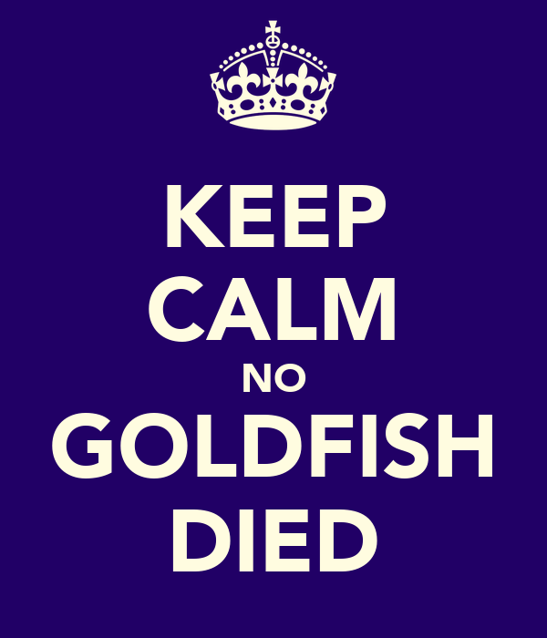 KEEP CALM NO GOLDFISH DIED