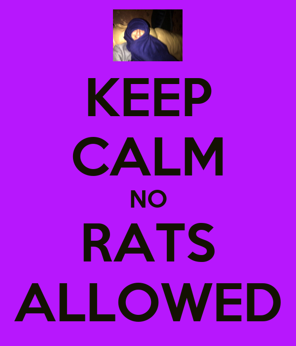 KEEP CALM NO RATS ALLOWED