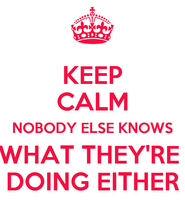 KEEP CALM NOBODY ELSE KNOWS WHAT THEY'RE  DOING EITHER