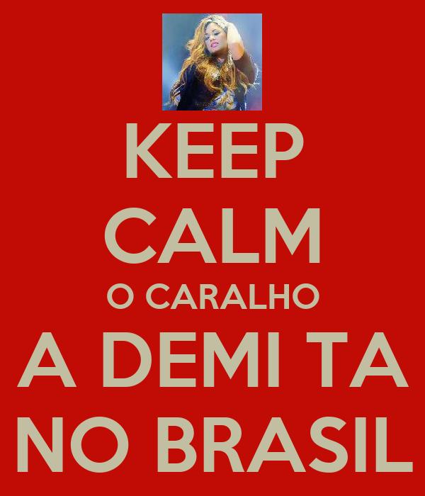 KEEP CALM O CARALHO A DEMI TA NO BRASIL