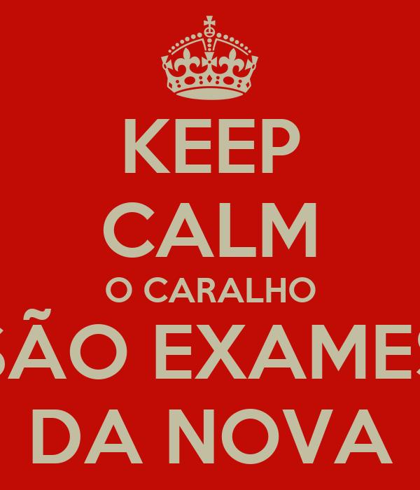 KEEP CALM O CARALHO SÃO EXAMES DA NOVA