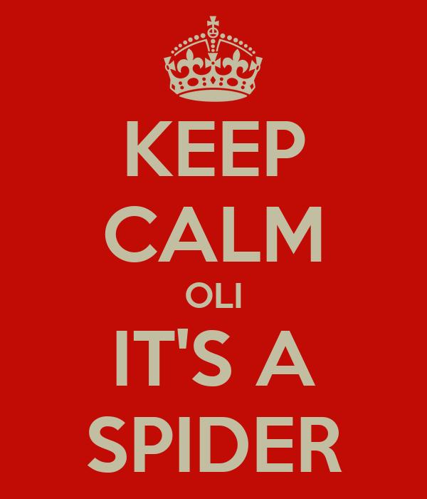 KEEP CALM OLI IT'S A SPIDER