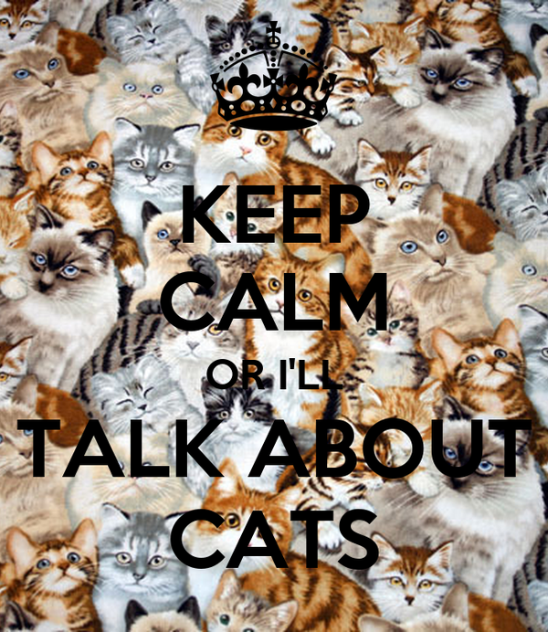 KEEP CALM OR I'LL TALK ABOUT CATS