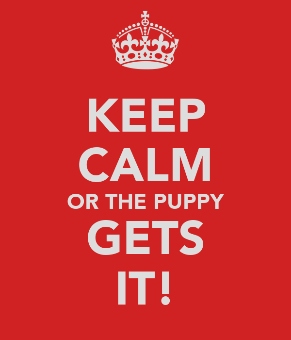 KEEP CALM OR THE PUPPY GETS IT!