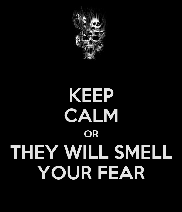 KEEP CALM OR THEY WILL SMELL YOUR FEAR