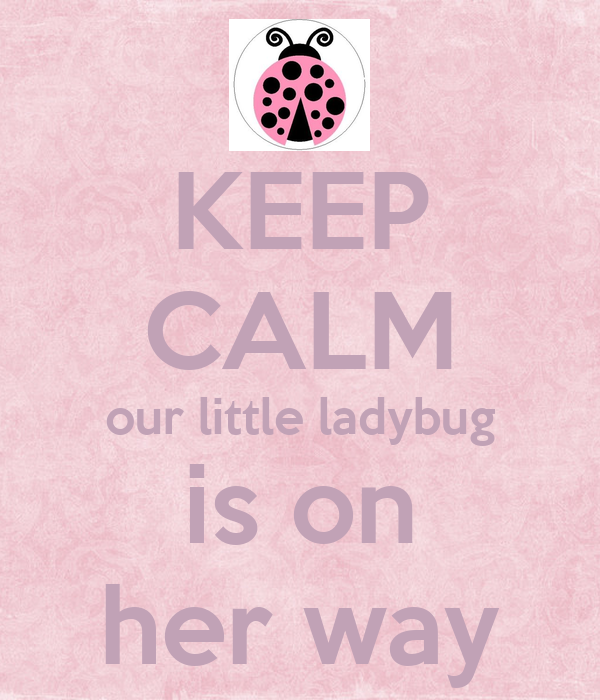 KEEP CALM our little ladybug is on her way