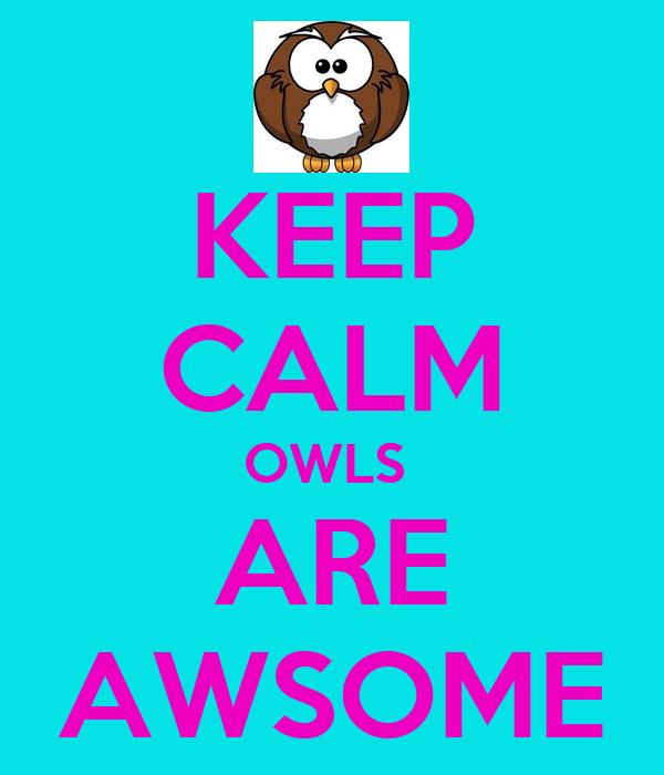 KEEP CALM OWLS  ARE AWSOME
