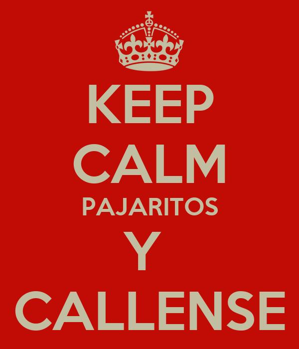 KEEP CALM PAJARITOS Y  CALLENSE