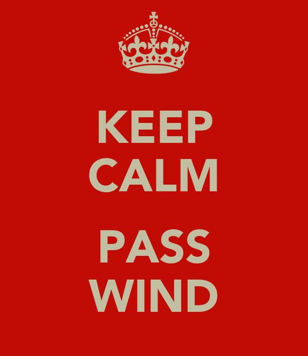 KEEP CALM  PASS WIND